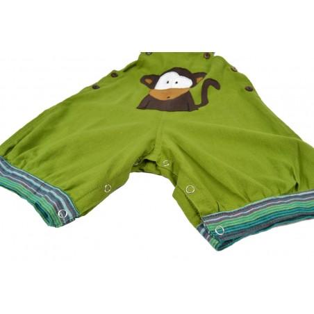 Peto corto Mono Verde