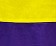 Amarillo-Morado